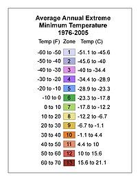 Bikini girls with young budding breasts